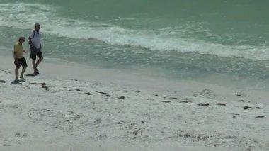 Two guys walking along the beach — Stock Video