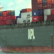 APL Arabicargo ship full of containers — Stock Video #31650633