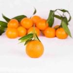 Mandarines — Stock Photo