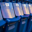 Blue jays chair's - Stock Photo