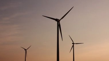 Field with wind generators — Vídeo de Stock
