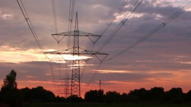 Electricity pylons — Stock Video