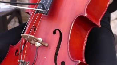 Musician play on cello — Stock Video