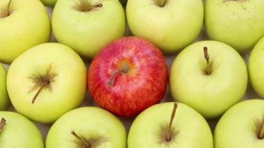 Be different - green apples with one red apple — Stock Video