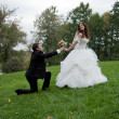Stock Photo: Newly married couple dancing in field