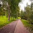 Path for people and cyclists in the Park — Stock Photo #36338613