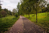 Road in autumn park — Stock Photo