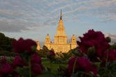 Lomonosov Moscow State University at summer — Stock Photo