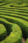 Spiral maze — Stock Photo