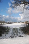 Couvert de neige terres agricoles — Photo