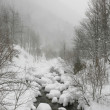 Snowy river in winter sadness isolation and cold ambient — Stock Photo