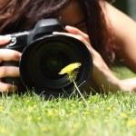 çimenlerin üzerinde bir çiçek fotoğrafı alarak güzel bir kız, yakın çekim — Stok fotoğraf