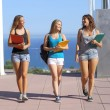 Stock Photo: Group of three student teenagers walking towards camera