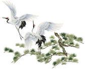 A Japanese crane — Stock Photo