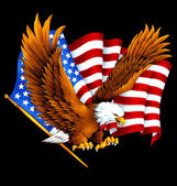 USA eagle, — Stock Photo