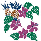 Hibiscus and pineapple — Stock Vector