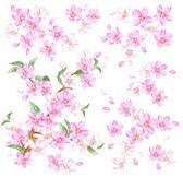 Dekoration cherry — Stockfoto