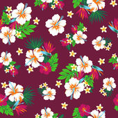Repetition of Hibiscus — Stock Photo