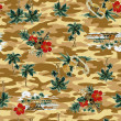 Hawaiiprint, — Stock Photo #41741005