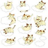 Mooie kat — Stockvector