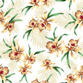 Pattern of Cattleya — Stock Photo
