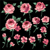 Illustrazione della rosa — Vettoriale Stock