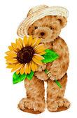 Krásný medvěd — ストック写真