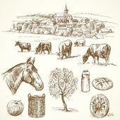 çiftlik hayvanı, kırsal köy - el çekilmiş koleksiyonu — Stok Vektör