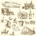 Farm collection — Stock Vector