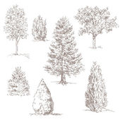 Hand drawn trees isolated on white — Stock Vector
