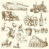 Colección de granja — Vector de stock
