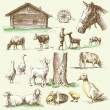 Vector de stock : Farm collection