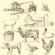 Vector de stock : Farm - hand drawn collection