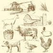 Farm - hand drawn collection — Stock Vector