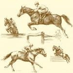 Race horse — Stock Vector #13784656