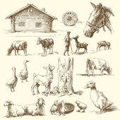 Fattoria - collezione disegnata a mano — Vettoriale Stock