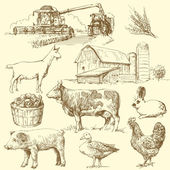 Farm - hand drawn collection — 图库矢量图片