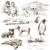 Esploratore polare — Vettoriale Stock