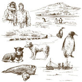 Polar explorervectorillustratie van jonge vrouw met pompoen op halloween nacht — Stok Vektör