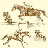 Race horse — Stock Vector
