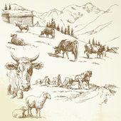 Hand drawn farm — Stock Vector