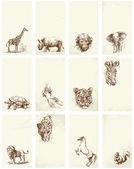 Business card - wild animals — Stock Vector