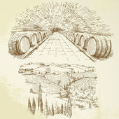 Vineyard - hand drawn set — Vector de stock