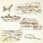 Farming, rural landscape — Stock Vector