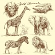 Wild animals — Vector de stock
