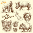 Hand drawn animals collection - Imagen vectorial