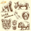 Hand drawn animals collection - Stok Vektr