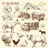 Farm collection-handmade drawing — Stok Vektör