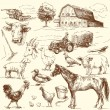 Stock Vector: Original hand drawn farm collection