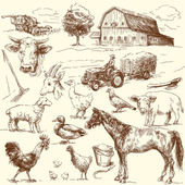 Original hand drawn farm collection — Vector de stock